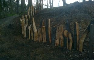 Wyre forest cleft Oak fence