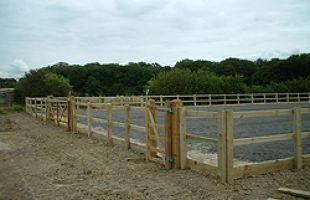 Horse riding area