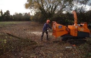 Forestry / Conservation Scrub Clearance works