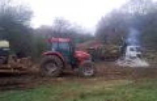 Forestry / Conservation Works at Hangman's Hill